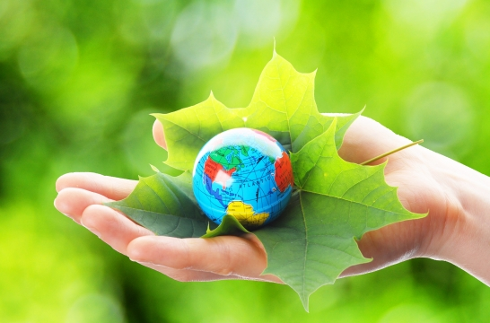 Для школьников Москвы 1 сентября пройдет экологический урок
