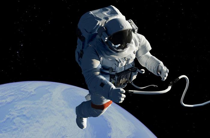 Белки в космосе