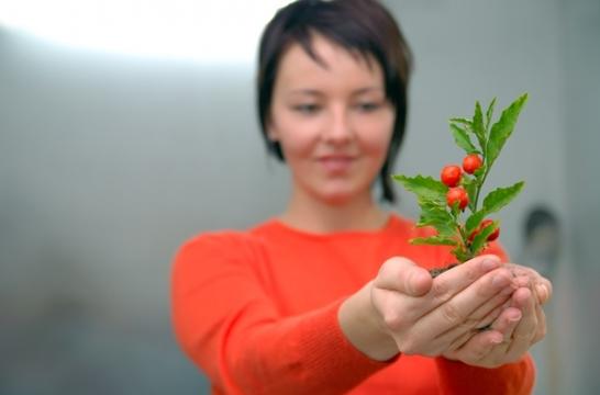 Минприроды России предлагает создать Ассоциацию экологического воспитания молодежи