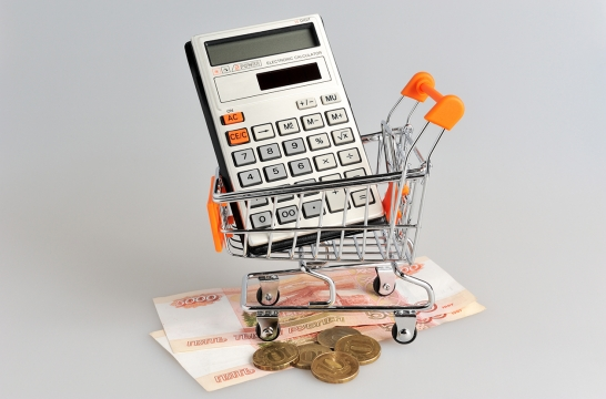 Элементы обучения школьников финансовой грамотности предлагают ввести в уроки математики и обществознания