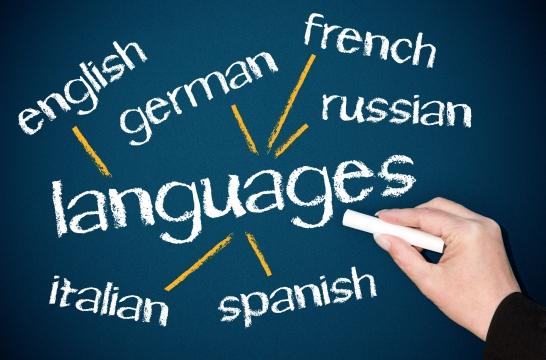 Подход к преподаванию иностранного языка в школе надо менять – Васильева