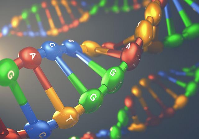 Лабораторная эволюция помогла усовершенствовать метод генного редактирования.