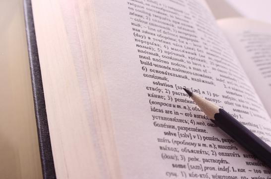 Словари надо сделать составной частью учебного процесса – глава Института русского языка РАН