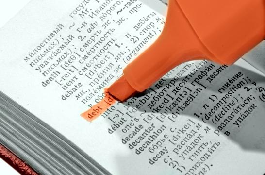 Нужен базовый толковый словарь, ориентированный на школу – ректор РГПУ