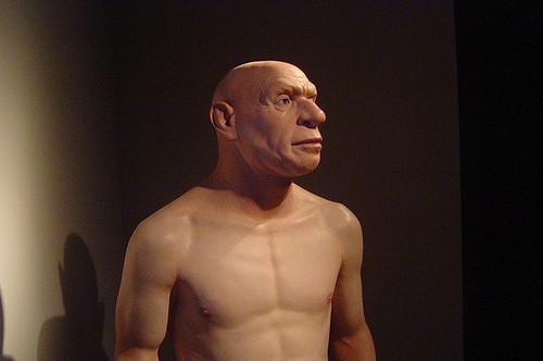 Почему неандертальцы были такие носатые