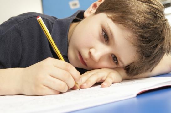 В России 11% детей учатся во вторую смену – Синюгина