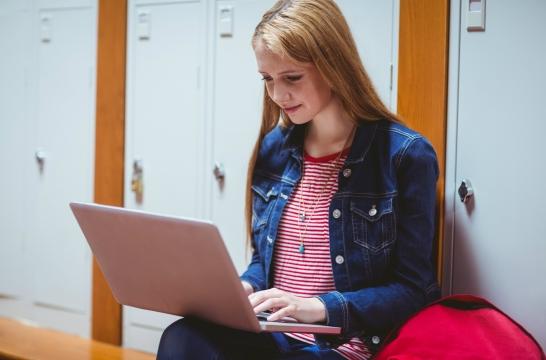 В Совете Федерации обсудят детские онлайн-игры