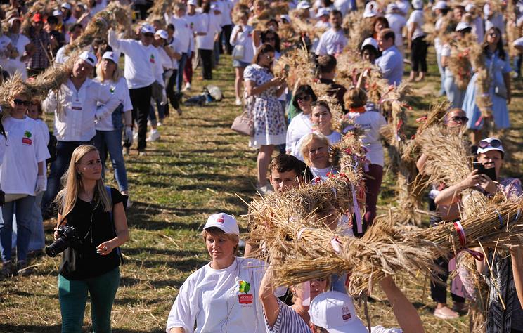 Километровую косу, заплетенную из пшеничных колосьев в Москве, занесут в Книгу рекордов РФ