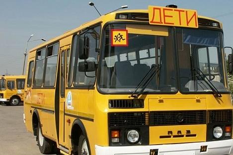 Правительство РФ выделило 2,5 млрд рублей на поставку в регионы новых школьных автобусов