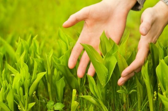 Минпросвещения России поддержало экологические уроки серии «Разделяй с нами»